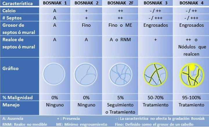 Bosniack